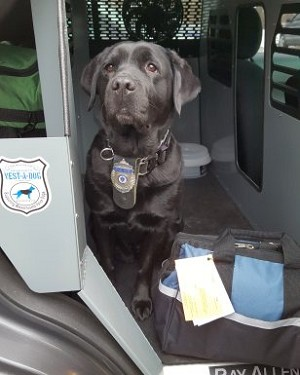 Officer Lola Given First Aid Kit by 'Vest-a-Dog'   Groton Herald